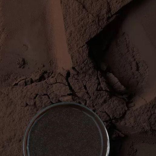 Какао порошок алкалізований із зниженим вмістом жиру Bensdorp BLACK (Barry Callebaut), 1 кг