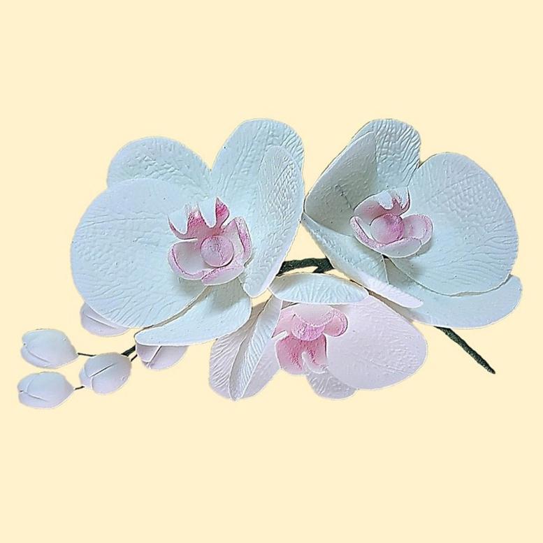 Цукрова прикраса Гілочка орхідеї тонована